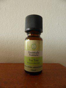 tea-tree-australie-he
