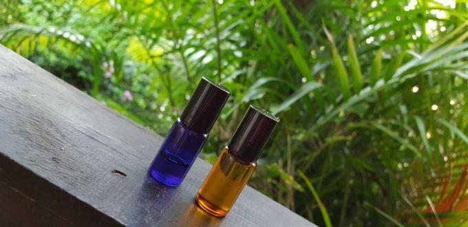 Plante essentielle - Sinusite huile essentielle ravintsara ...