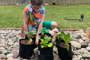 Read more about the article A Busy Mom Learns How to Container Garden with Planted Places