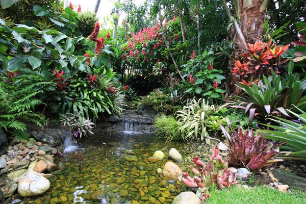 Design Your Own Courtyard Garden