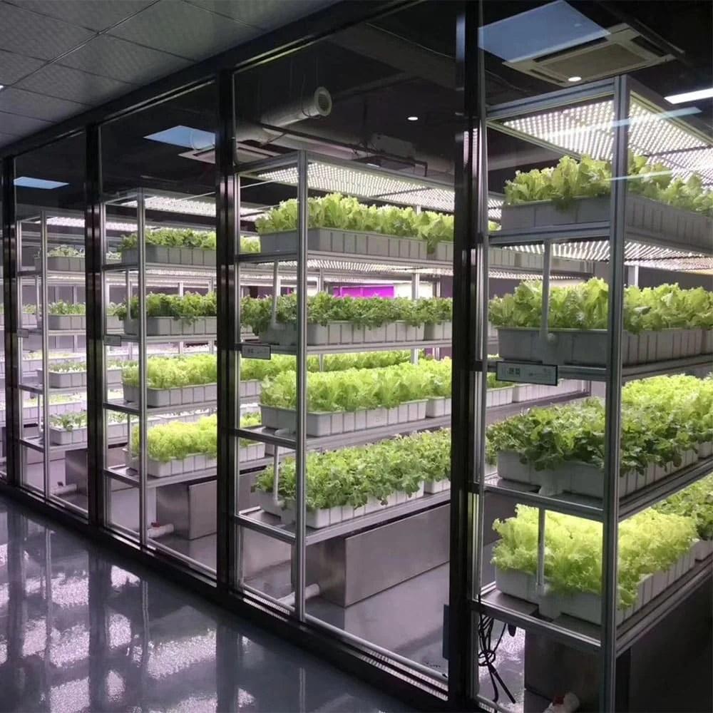 Indendørs vertikal gartneri med jordbær og urter