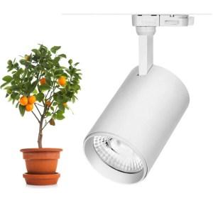 Vækstlampe til skinne og som loftspot 30Watt Hvid
