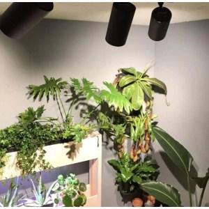 Vækstlampe spot til skinne og loftspot 15Watt Hvid