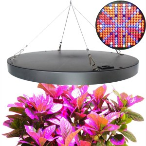 Plante vækstlys 40W UFO LED pendel 60° 2Stk.
