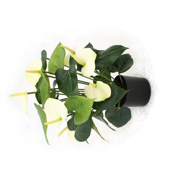 Anthurium Deluxe kunstplant creme 50cm