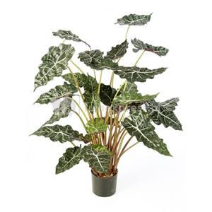 Kunstplant Alocasia polly L
