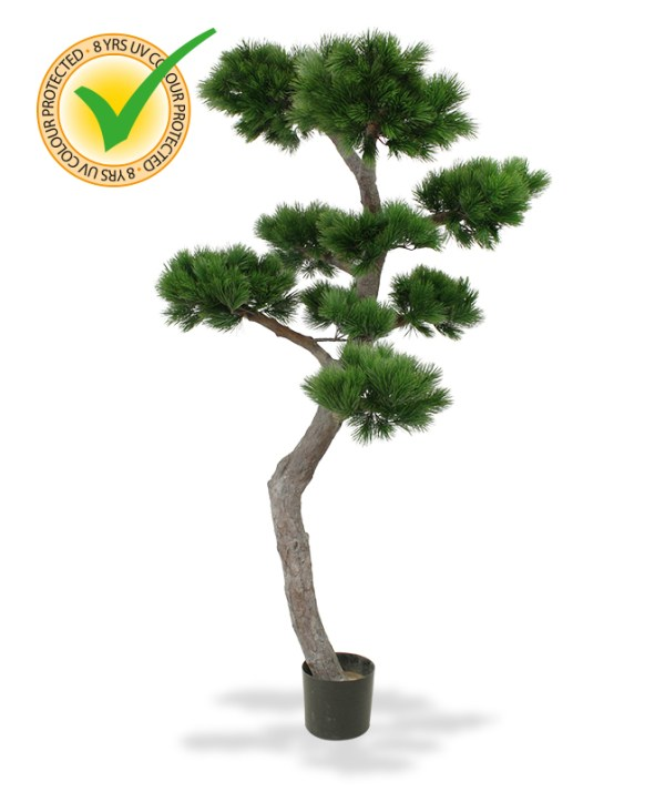 Pinus Bonsai XL kunstboom 200 cm UV