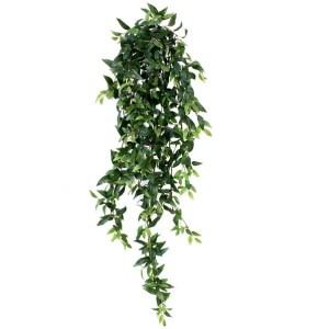 Ruscus Hangplant 125cm