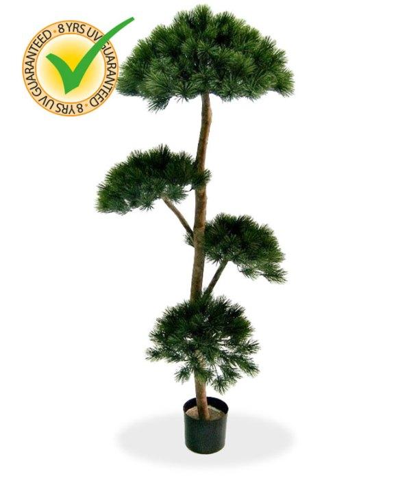Pinus Deluxe Layer x4 180 cm UV