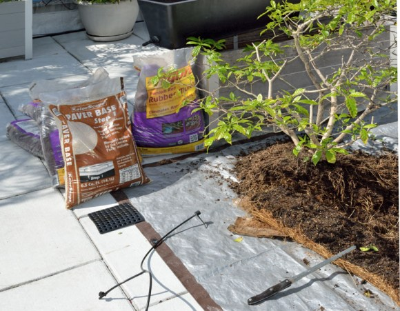 container gardening repotting supplies