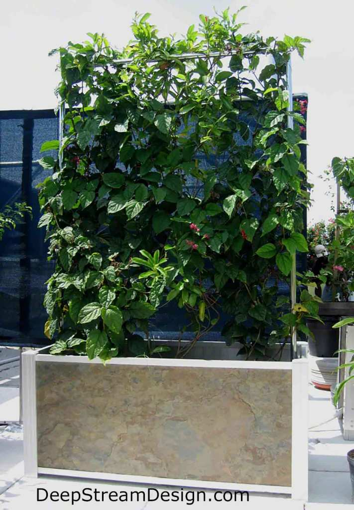 Click link to DeepStream website for more info on Modern Slate Planter with Trellis