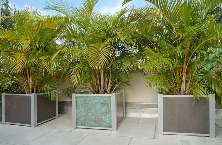 2 DeepStream Square Modern Audubon Slate planters flank one in Copper
