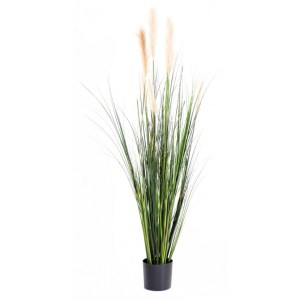 carex graminée avec fleurs artificiel