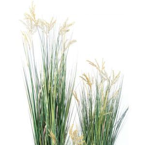 papyrus scirpus validus graminée artificiel