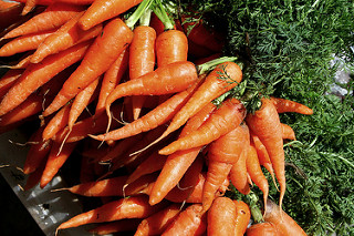 carrots help prevent gastric and prostate cancer