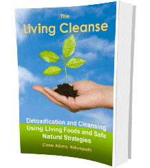 the living cleanse book