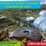 Avoiding the spread of disease in gardens by water