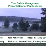 Introduction to tree safety policy in National Trust gardens and parks.