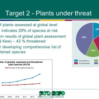 Progress towards the targets of the Global Strategy for Plant Conservation and the role of Botanic Gardens