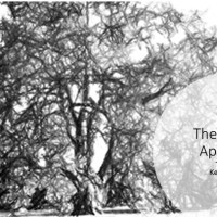 Tree monitoring and treatment - the holistic approach