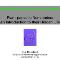 Plant-parasitic nematodes - An introduction to their hidden life