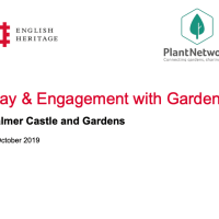 Play & Engagement