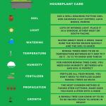 Bonsai Tree Care 1 Keep Your Bonsai Alive Care Sheet Plantophiles