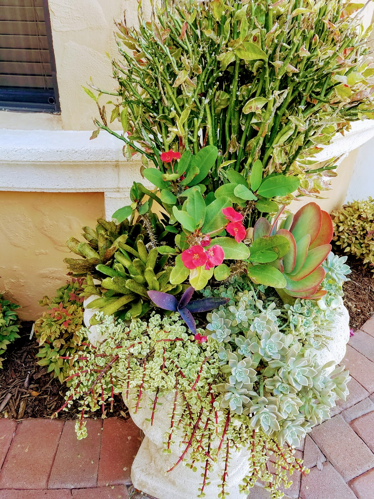 Mixed Planting In Classic Urn