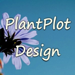 Our Design Services