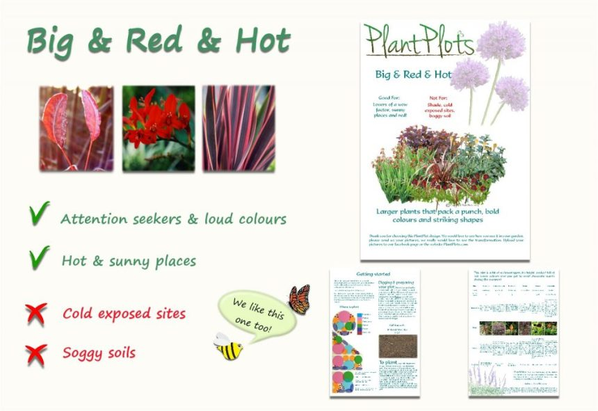 Garden Border Planting Design Plan large red plants and flowers