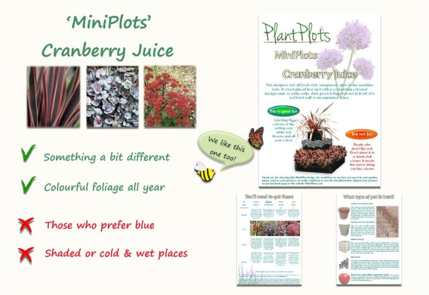 Garden Border Planting Design Plan easy care planting in deep red purple