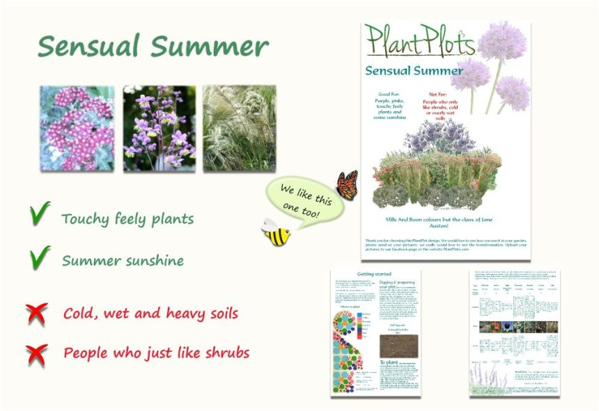 Garden Border Planting Design Plan tall soft planting in pink and purple
