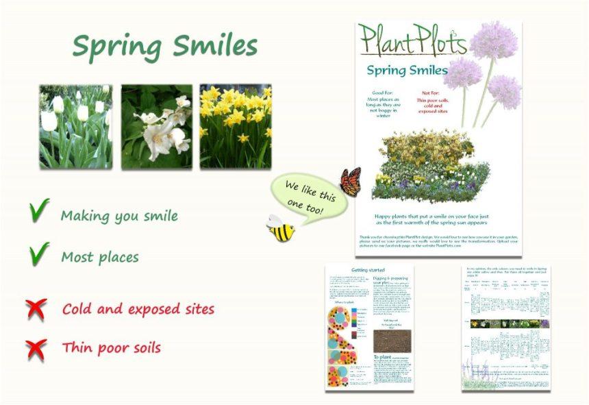 Garden Border Planting Design Plan scented spring flowers yellow