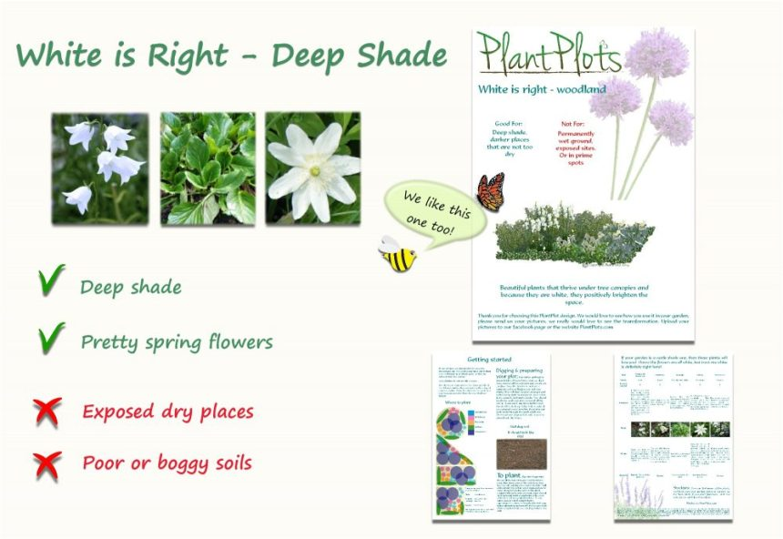 plants for deep shade garden design product