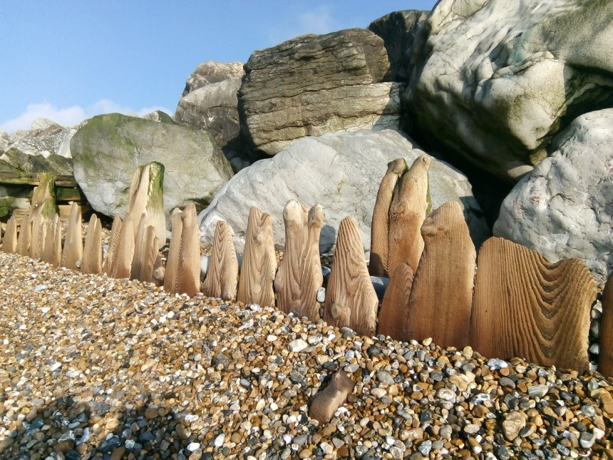 Wooden posts eroded by sea beautiful grain and weathering