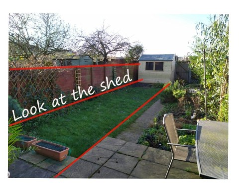 garden design showing how visual lines of fences draw attention to sheds