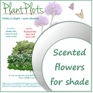 Link to plants for light shade garden design product