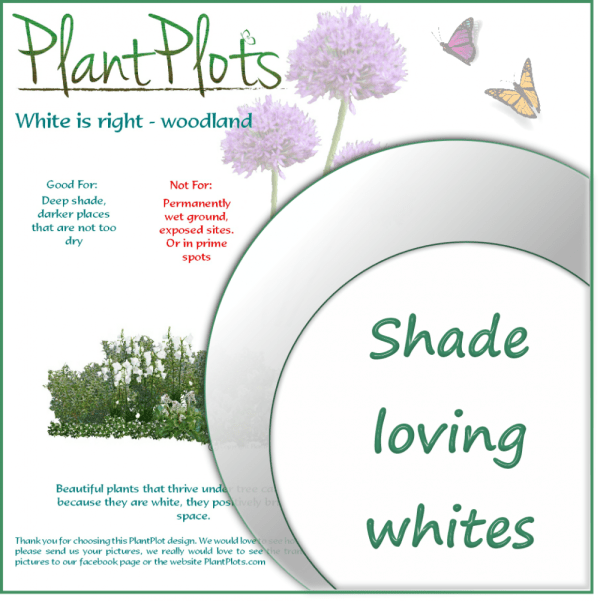 link to plants for deep shade garden design product