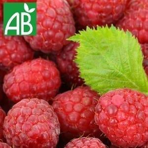 Plants Petits Fruits Framboisier Meeker 7 Bio