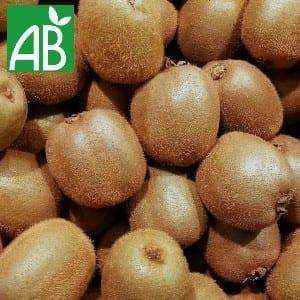 Plants Petits Fruits Kiwi Hayward Bio