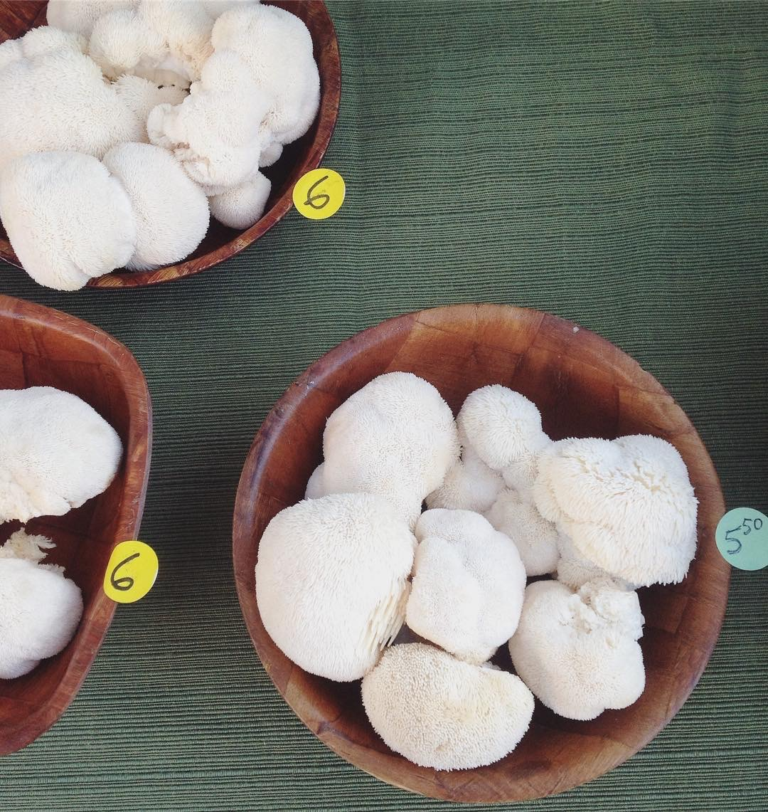 Try other varieties of mushrooms in this recipe, like these organic puffballs.