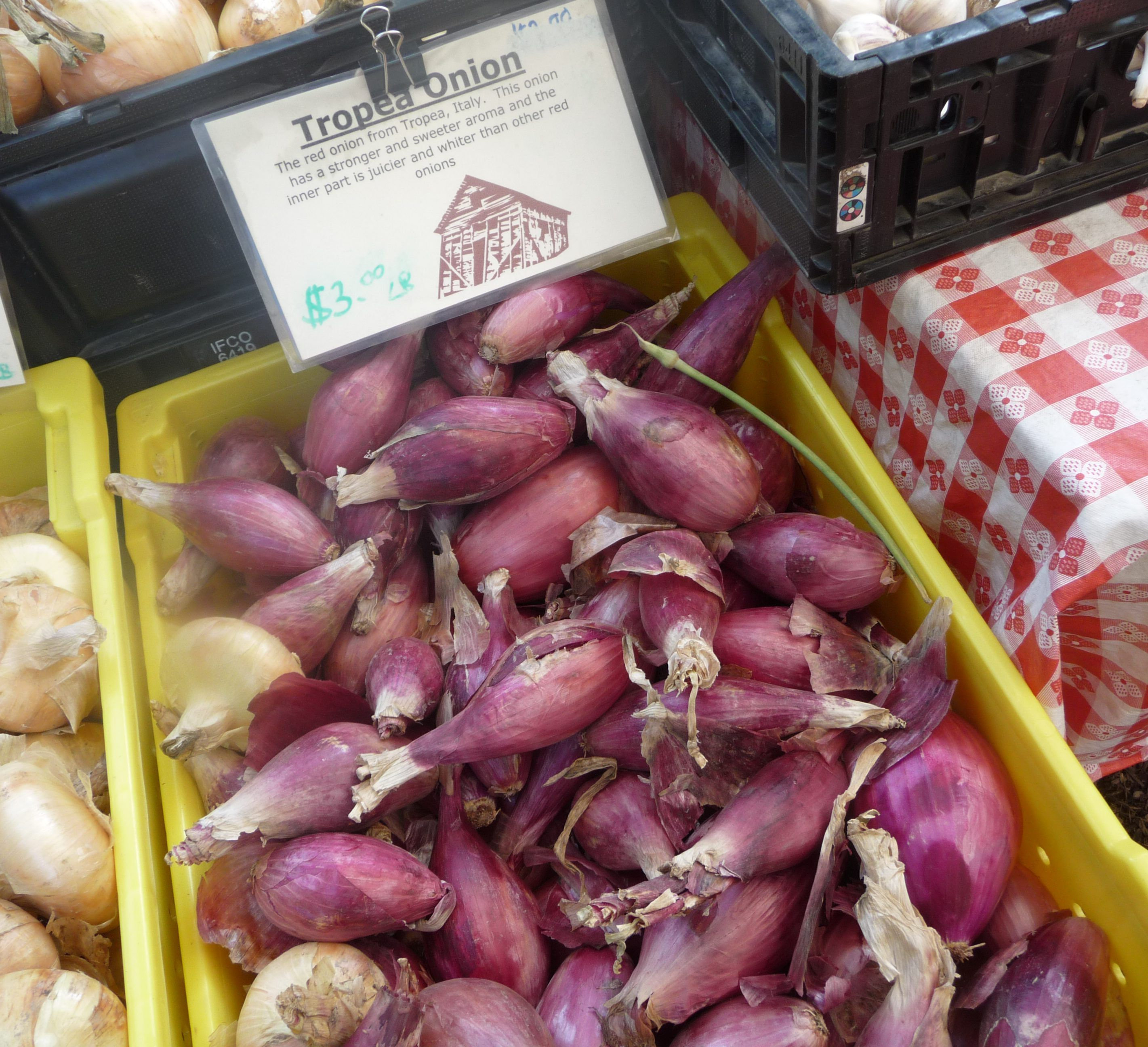 Organic Tropea Onions from the farmer's market