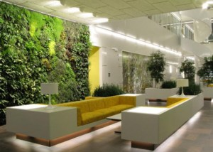 green-wall-plantscapes