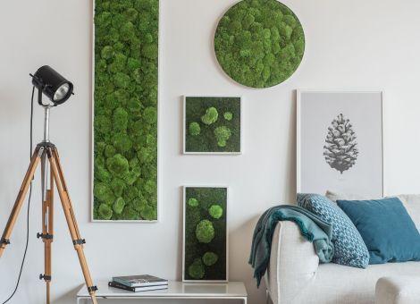 Indoor Moss Wall- New Twist in Living Walls