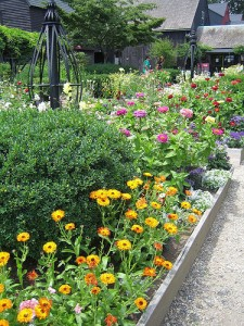 raised garden bed with perennial flowers