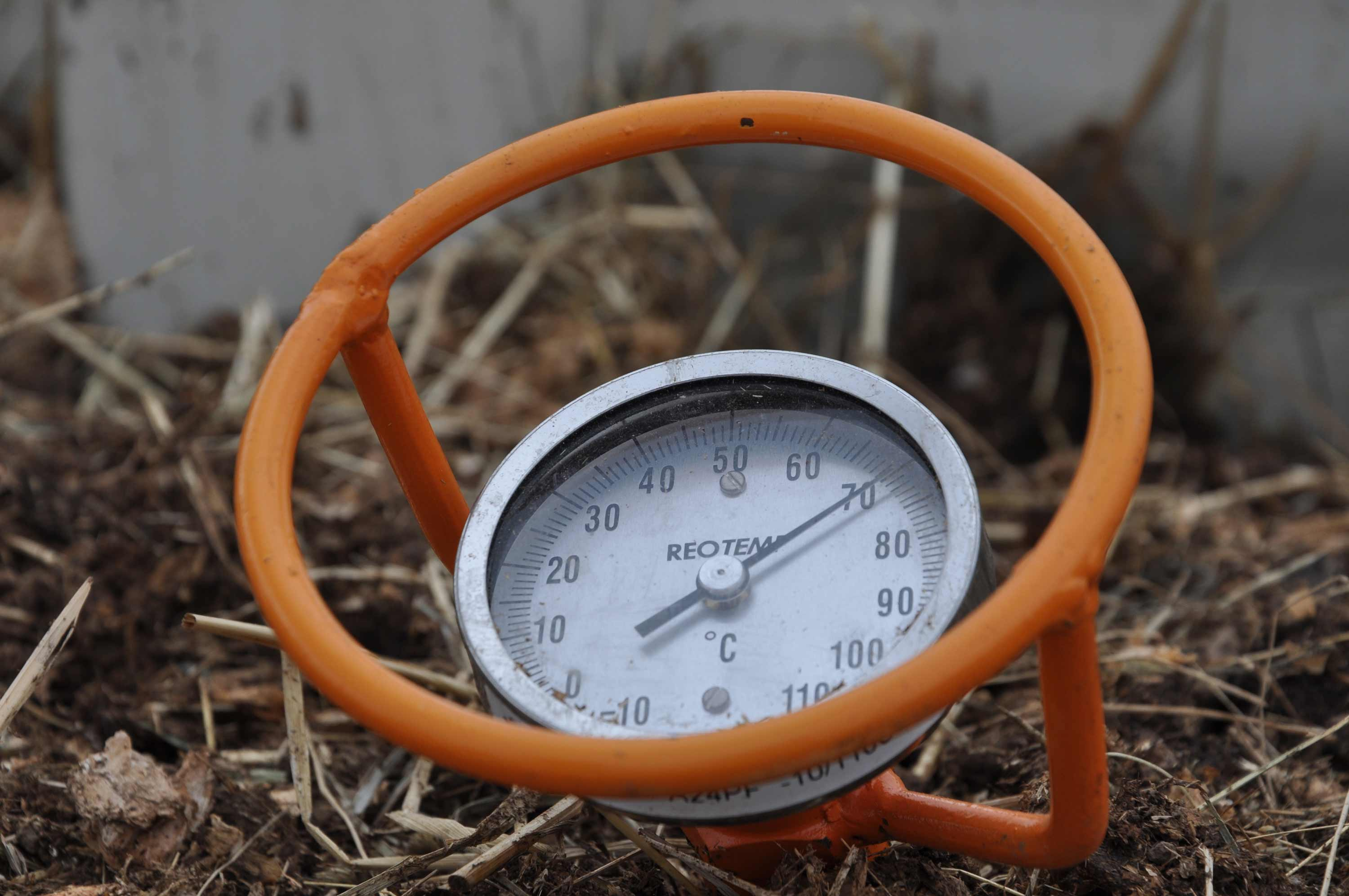 Stick a thermometer in the soil before planting vegetables