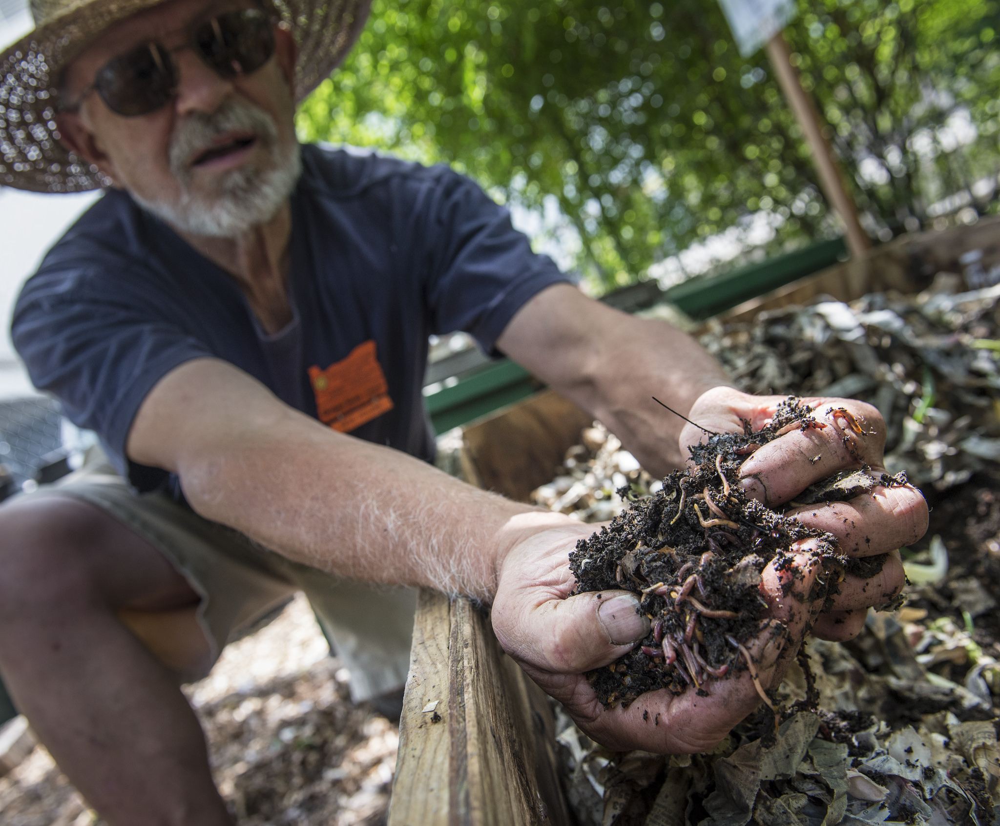 Wiggle your way into worm composting