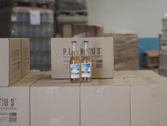 PLANTUS drinks manufacture