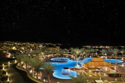 53714823-H1-Free_form_pool_by_night