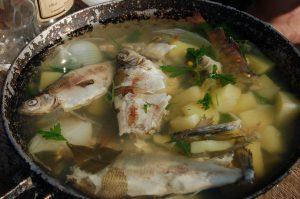 guiso-pescado